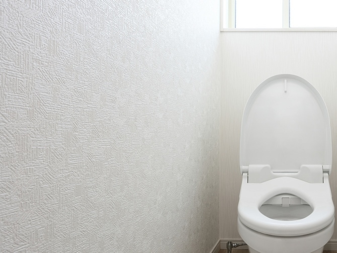 失敗しない!トイレの壁紙選び&おしゃれな事例集 リフォーム会社紹介サイト「ホームプロ」